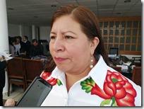 Juanita Cruz pedirá licencia