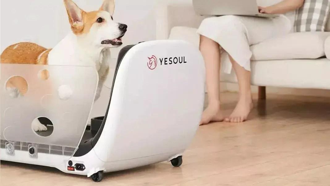 geniale xiaomi lancia il tapis roulant yesoul per la forma fisica dei nostri amici a 4 zampe