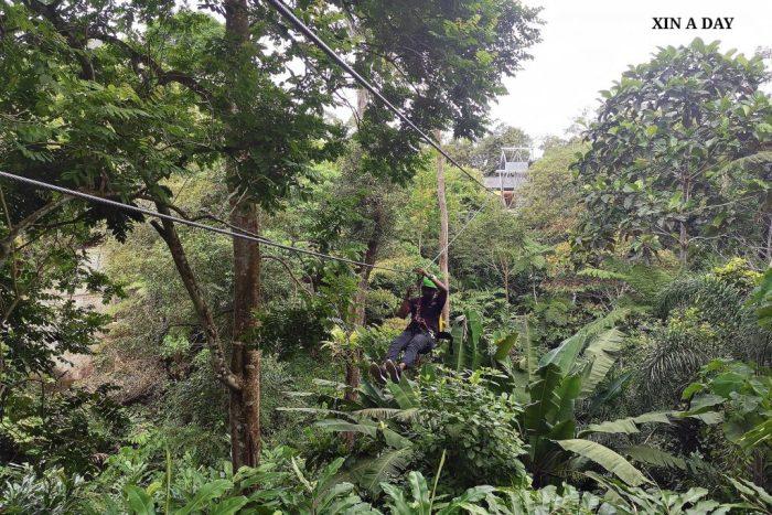 Zipline Flight of the Colugo @ Penang Hill