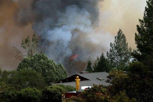 שריפות קנאביס קליפורניה
