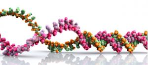 омоложение пептидами