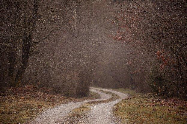 דרך ירוקה ויפה, עם סיבוב שמוביל ללא נודע