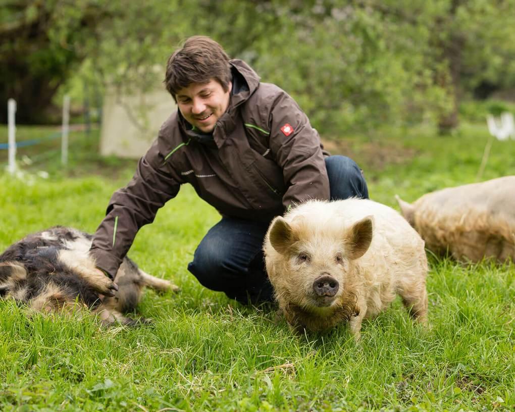 Schweine streicheln - ein tierischer Ausflug