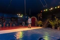 Cirkus Koloni 201535