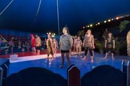 Cirkus Koloni 201538