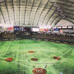 就労移行支援事業所ルーツ〜野球観戦してきました〜
