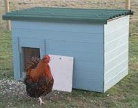Let og billigt hønsehus af pallekasse