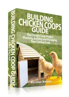Bog om at holde høns, E-bog om kyllinger