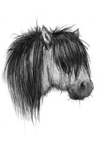 Kiri Leonard – illustratör till Isa och Minigänget