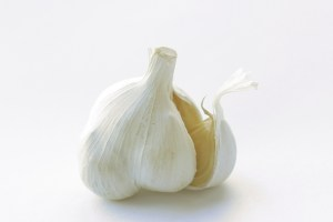 54.garlic1