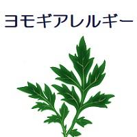 230.yomogi-00