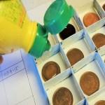 自由研究!10円玉をきれいにする方法の結果と考察・まとめ方