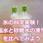 氷の科学実験!食塩水と砂糖水の凍り方を比べてみよう