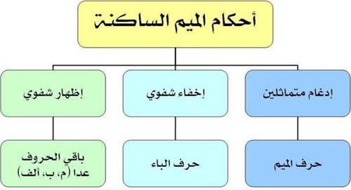 أحكام الميم الساكنة تجويد القرآن الكريم