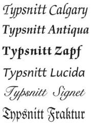 Bildresultat för typsnitt