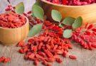 Les avantages de fruit Goji pour avoir une alimentation saine
