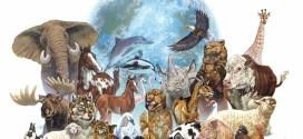 Significado de soñar con animales