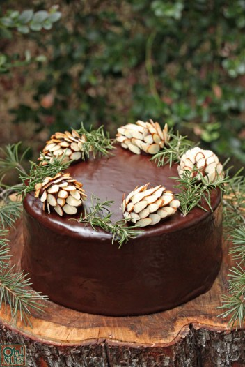 Chocolate pinecones cakes. Fall and autumn cakes for beginner bakers. 14 Amazing Fall Cakes That Look Almost Too Beautiful to Eat: Sweater weather is not complete without cake!!! Nothing is more beautiful and comforting than fall cakes! This guide is so so perfect for beginner bakers and newbie cake decorators. Pumpkin spice and apple pie in cakes in amazing! I love the fall rich colors! These cakes look too beautiful to eat but hey I'll be eating them! Definitely pinning for later!