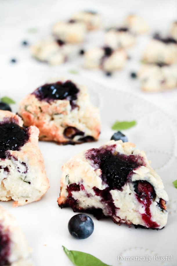 Basil Goat Cheese Wild Blueberry Scones | Scones are little nuggets of golden brown goodness known for accompanying your afternoon tea. You can choose different flavor combinations like Dark Chocolate Cherry, Gruyere & Procuitto, and Maple Bacon. Here are some basic tips before baking scones to guarantee you get perfect scones every time. How to Make Sweet & Savory Scones Perfect Every Time! #xokatierosario #easysconerecipes #homemadescones #sweetscones