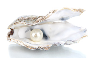 single pearl in a shell