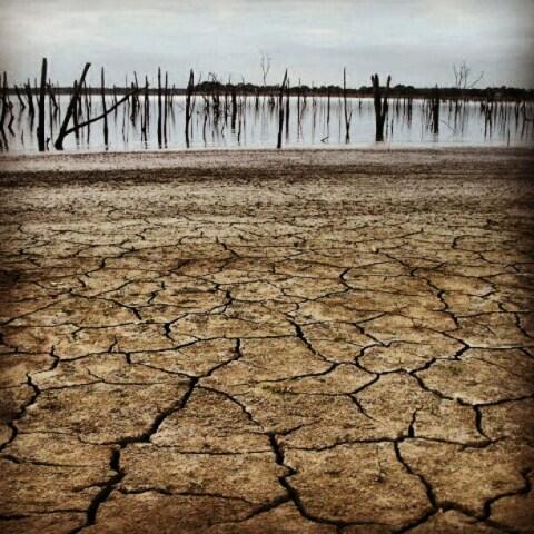 Lake Tawakoni TX