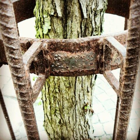 Tree crutch