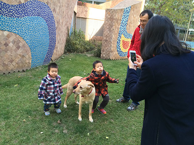 Already Chinese families posing with her to take a photo, just like a real Expat 
