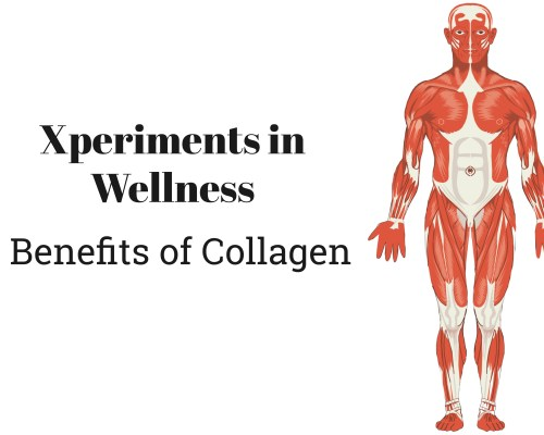 5 Ways to Use Collagen as an Ingredient | www.xperimentsinliving.com