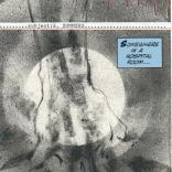 Look at how much information this panel conveys. (Havok & Wolverine: Meltdown #2)