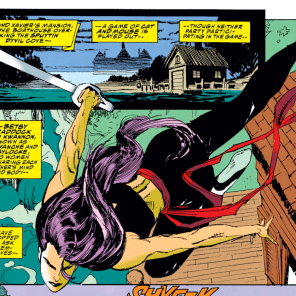 ...which is the cat, and which the mouse, and which the mousecat, and which the catmouse, and... (X-Men #24)