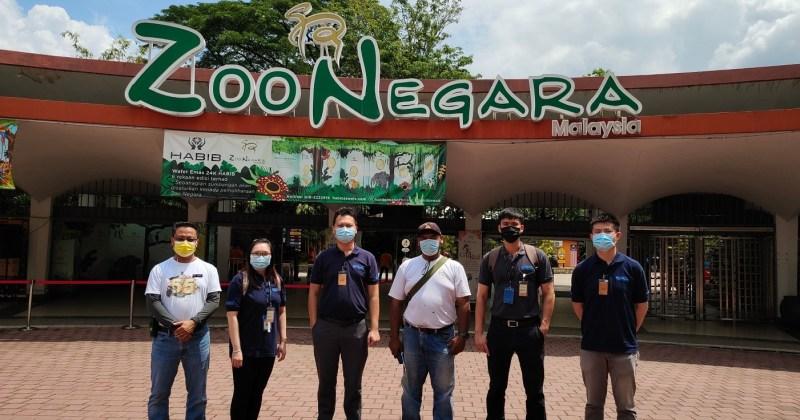 xplode liao_zoo negara_国家动物园_马来虎