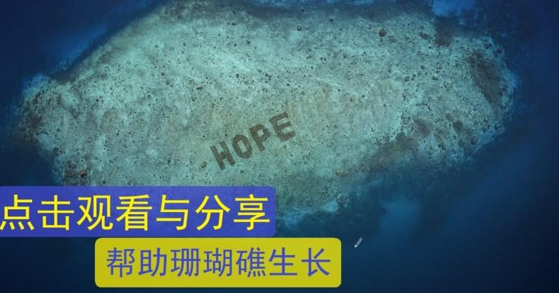 Xplode liao_Hope Reef_珊瑚