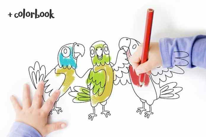 Free Parrot Color Book