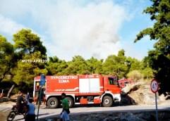 Σαμοθράκη: «Εκτός απροόπτου η κατάσταση δείχνει να είναι υπό έλεγχο», δηλώνει για την πυρκαγιά που εκδηλώθηκε στην Καμαριώτισσα ο δήμαρχος Σαμοθράκης, Θανάσης Βίτσας