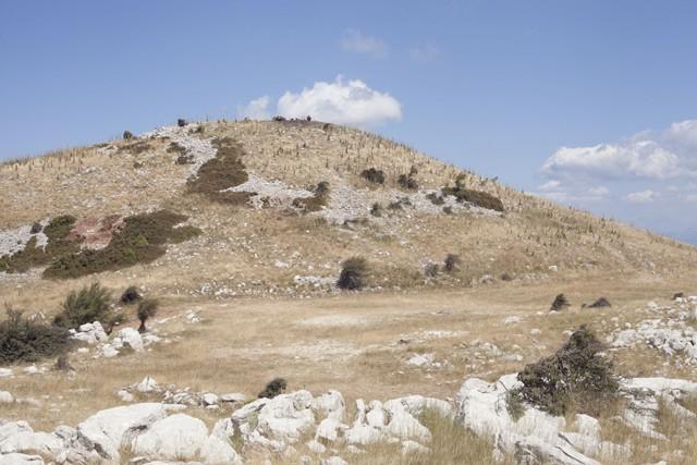 Νότιο ύψωμα του Λυκαίου Όρους με το βωμό τέφρας του Διός στην κορυφή του.