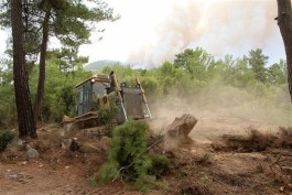Απαγορεύεται η κυκλοφορία στα δάση της Καβάλας και της Θάσου