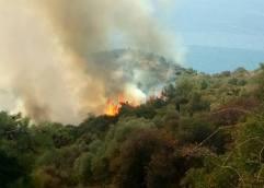 Θάσος: Άμεση κατάσβεση πυρκαγιάς στην περιοχή Δεξαμενή Ποταμιάς