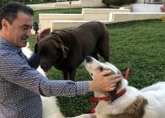 Μάκης Παπαδόπουλος: «Βελτιώνουμε τη φροντίδα του Δήμου για τα ζώα συντροφιάς και τα αδέσποτα»