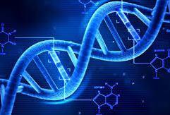 Η θεραπεία για την COVID-19 θα διαφέρει ανάλογα με το στάδιο της νόσου και το γενετικό υπόστρωμα του ασθενούς