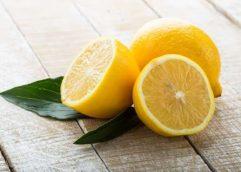 Λεμονάκι μυρωδάτο… Νότιου Αφρικής