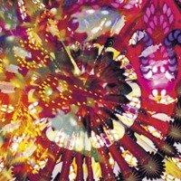 Caribou Vibration Ensemble – CV 2011 (Caribou Vibration Ensemble)