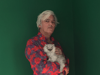 ROBYN HITCHCOCK Announces more solo shows for 2018! 2