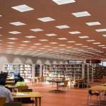 Jesse H. Jones Central Library | Education