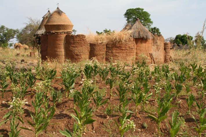 Benin 01 S
