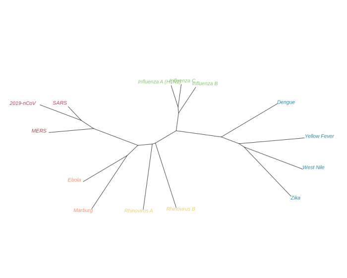 Simple unrooted phylogenetic tree visualization of the phylogenetic relationships of 2019-nCoV