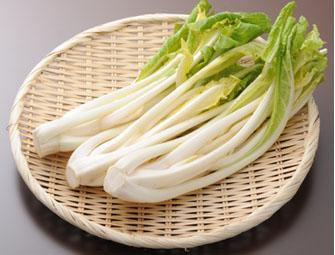 「米沢雪菜」の画像検索結果