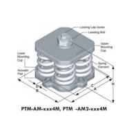 PTM-AM