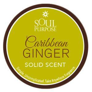 0003509 Caribbean Ginger Solid Scent 05 Oz 300