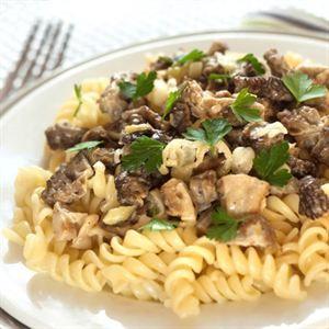0007073 Gofoods Premium Pasta With Mushroom 300