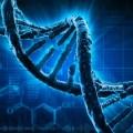 Yaabot_DNA.jpg
